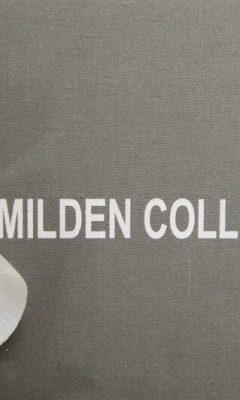 Milden / Livena