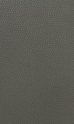 Dollaro PU Grey Glossy Коллекция Вектор (Vektor)