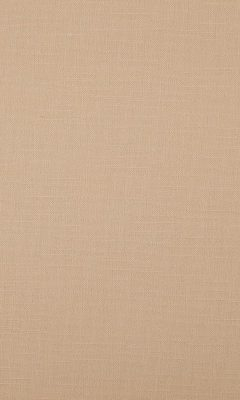 341 «Canvas» / 1 Bonfire Beige ткань Daylight