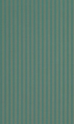 338 «Candy Stripes» / 67 Slate Aquamarine ткань Daylight