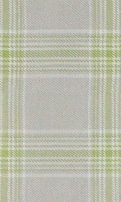 307 «Altissimo» / 4 Altissimo Moss ткань DAYLIGHT
