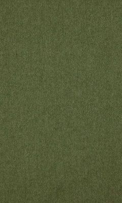323 «Cassel» / 21 Cassel Olive ткань DAYLIGHT