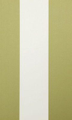 321 «Amilly» / 14 Amilly Olive ткань DAYLIGHT