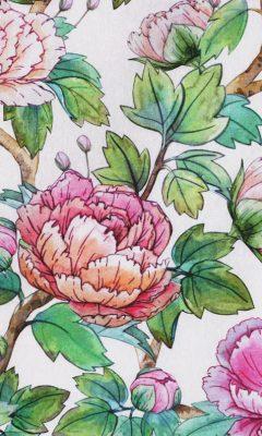 Каталог тканей для штор Siesta артикул DIG 0665 Цвет: Rosa WIN DECO (ВИН ДЕКО)