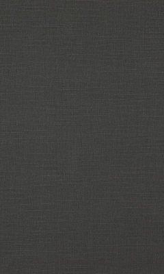 341 «Canvas» / 10 Bonfire Graphite ткань Daylight