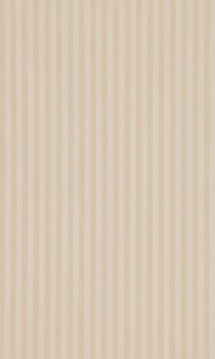 338 «Candy Stripes» / 76 Slate Cream ткань Daylight
