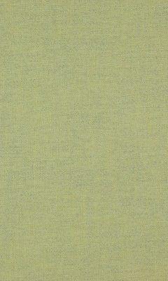331 «Cashmere» / 34 Cottony Fern ткань DAYLIGHT