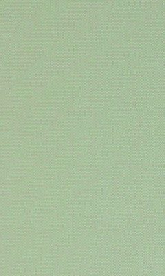 315 «Neonelli» / 33 Olgia Mushroom ткань Daylight