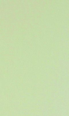 315 «Neonelli» / 35 Olgia Sand ткань Daylight