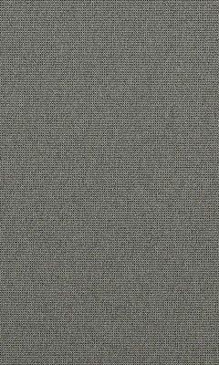 312 «Mezzano» / 23 Farini Beluga ткань
