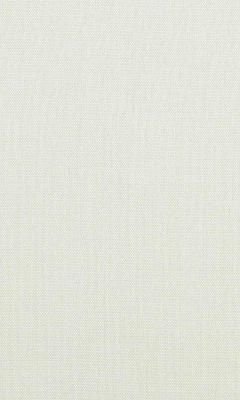 313 «Novello» / 19 Lioni Pearl ткань Daylight