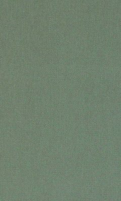 313 «Novello» / 49 Olgia Chinchilla ткань Daylight