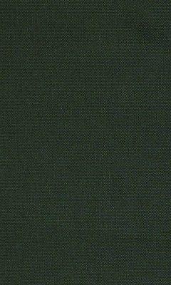 313 «Novello» / 71 Olgia Pinecone ткань Daylight