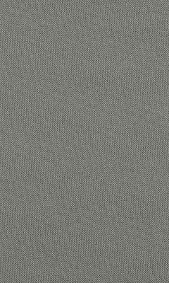 313 «Novello» / 90 Pietra Dragonfly ткань Daylight