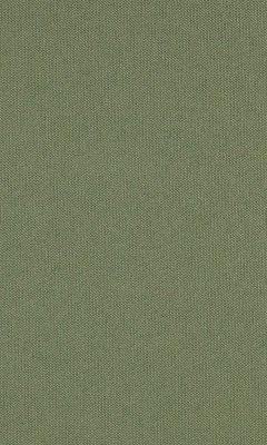 313 «Novello» / 100 Pietra Pesto ткань Daylight