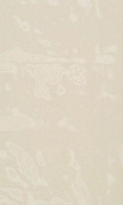 324 «Juilly» / 26 Vitre Greige ткань DAYLIGHT
