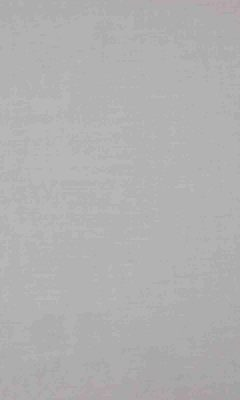 336 «Supreme» / 48 Feather Fog ткань Daylight