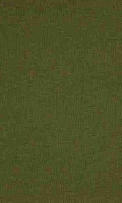 336 «Supreme» / 55 Cashmere Chive ткань Daylight