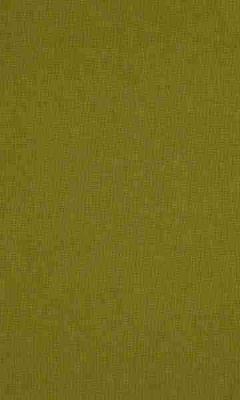 336 «Supreme» / 62 Cashmere Moss ткань Daylight