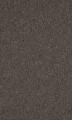 336 «Supreme» / 65 Cashmere Peppercorn ткань Daylight