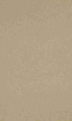 336 «Supreme» / 66 Cashmere Raffia ткань Daylight