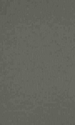 336 «Supreme» / 67 Cashmere Slate ткань Daylight