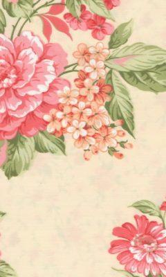 Roses-Mimos / Livena