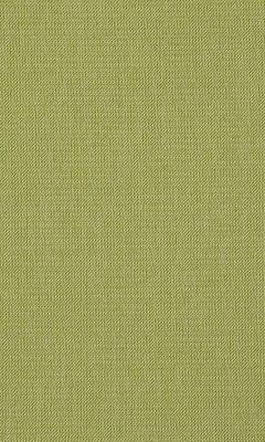 333 «Mezzano II» / 60 Starlight Moss ткань Daylight