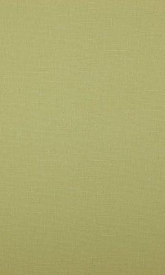 341 «Canvas» / 14 Bonfire Linden ткань Daylight