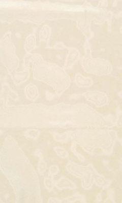 325 «Marie» / 35 Vitre Banana ткань Daylight