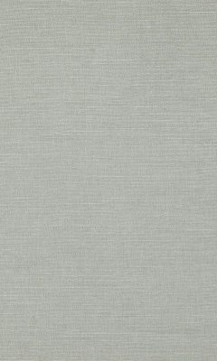 347 «Welt» / 27 Edge Silver ткань Daylight