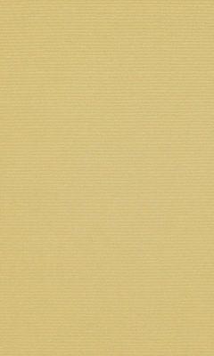 347 «Welt» / 41 Welt Honey ткань Daylight