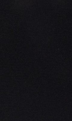 347 «Welt» / 45 Welt Liquorice ткань Daylight