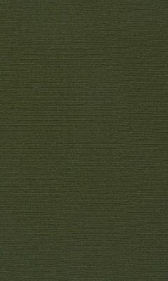 347 «Welt» / 46 Welt Lizard ткань Daylight