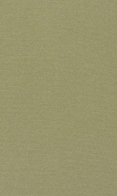 347 «Welt» / 53 Welt Pear ткань Daylight