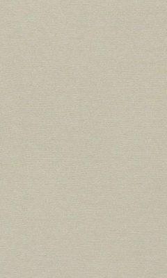 347 «Welt» / 58 Welt Sand ткань Daylight