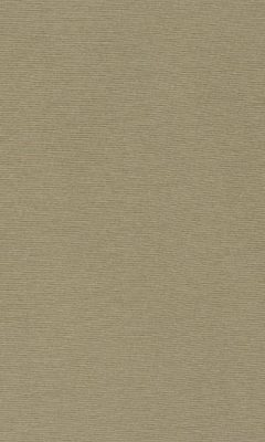 347 «Welt» / 60 Welt Seagrass ткань Daylight