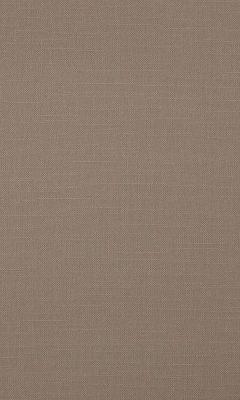 341 «Canvas» / 15 Bonfire Mushroom ткань Daylight