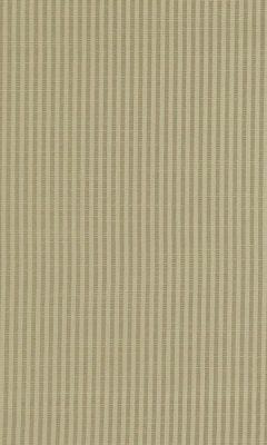 309 «Felitto» / 14 Mirto Straw ткань DAYLIGHT