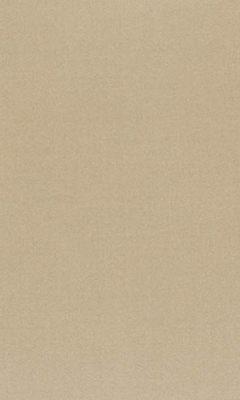 362 «Pure Saten» / 54 Vion Beige ткань Daylight