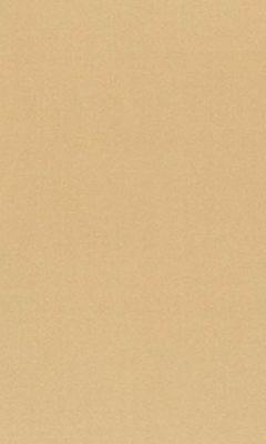 362 «Pure Saten» / 56 Vion Buff ткань Daylight
