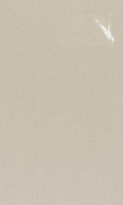 362 «Pure Saten» / 69 Vion Oyster ткань Daylight