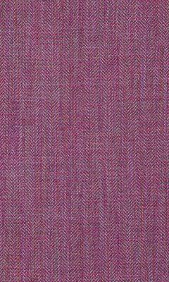 364 «Shanelly» / 37 Shanelly Fuchsia ткань Daylight