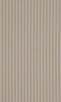 338 «Candy Stripes» / 83 Slate Linen ткань Daylight