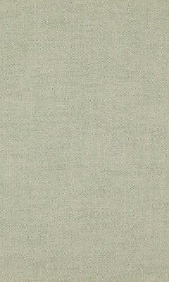 331 «Cashmere» / 41 Cottony Mineral ткань DAYLIGHT