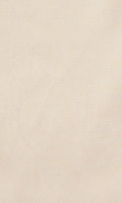 180 «Esperance» /17 Melton 17 ткань DAYLIGHT