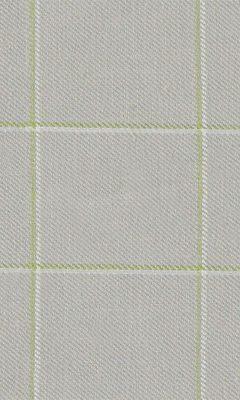 307 «Altissimo» / 19 Gela Moss ткань DAYLIGHT