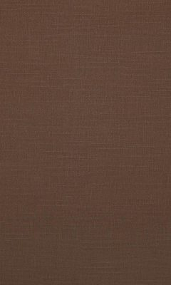 341 «Canvas» / 18 Bonfire Praline ткань Daylight