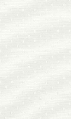 309 «Felitto» / 17 Rezzo Angora ткань DAYLIGHT