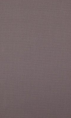 341 «Canvas» / 19 Bonfire Quartz ткань Daylight